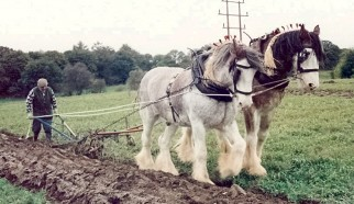 A Horse Drawn Plough competing in 1997